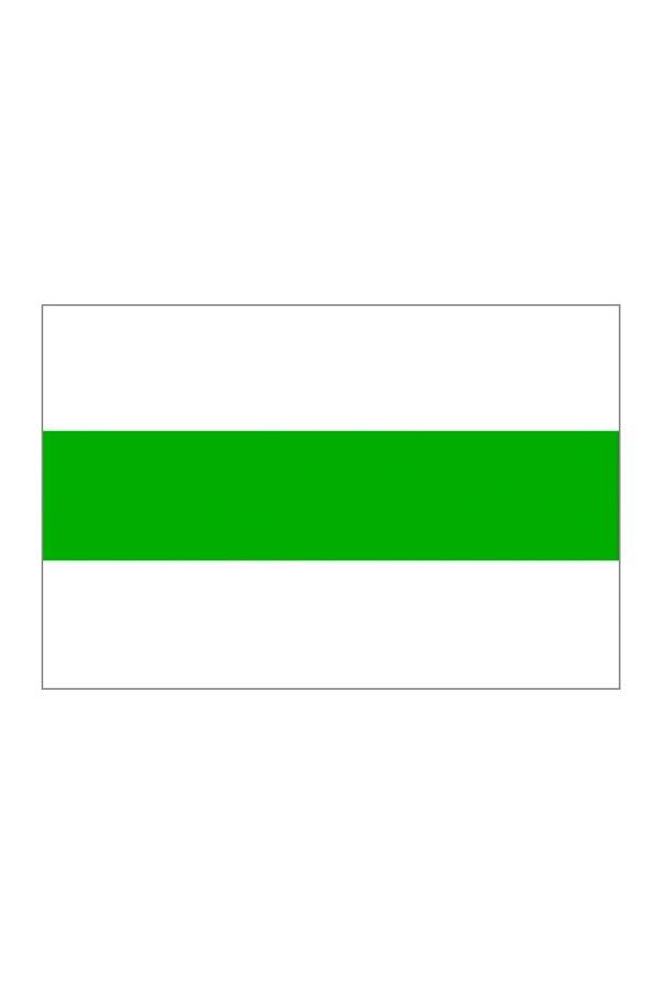 vlag van de stad Groningen