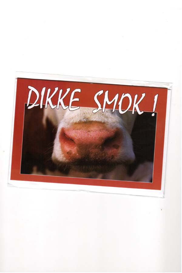 Wenskaart Dikke Smok Gronings
