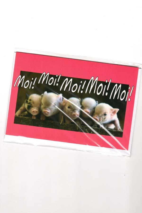 Moi Moi Moi Wenskaart Groningse taal