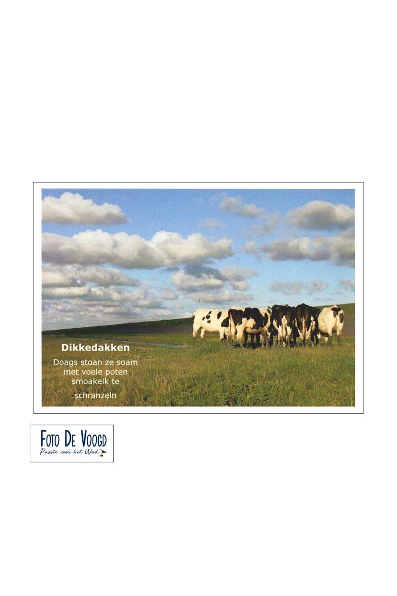 Fotokaart Gronings Dikkedakken